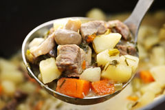 Beef stew in serving spoon Royalty Free Stock Photography