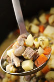 Beef stew in serving spoon Stock Photo