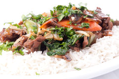 Beef stir fry with flank steak, fresh vegetables Stock Photos