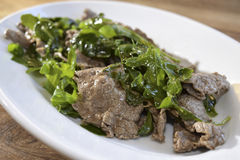 Beef strips with rocket Royalty Free Stock Photo