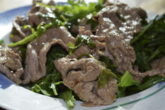 Beef strips with rocket Royalty Free Stock Photography