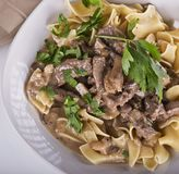 Beef Stroganoff with Egg Noodles. Top view stock image