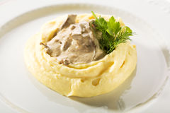 Beef Stroganoff with Mashed Potato Royalty Free Stock Photo