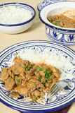 Beef stroganoff meal vertical Stock Photography