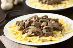 Beef Stroganoff on Pasta Royalty Free Stock Image