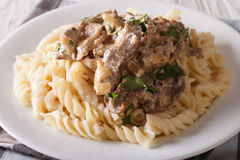 Beef stroganoff with pasta fusilli closeup on a plate. Horizonta Stock Images