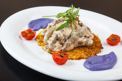 Beef Stroganoff on a potato pancake with sauce Stock Photos