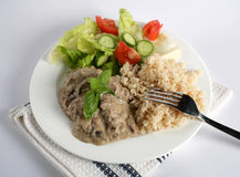 Beef stroganoff and rice Stock Photos