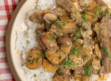 Beef Stroganoff Stew with Rice stock images