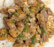 Beef Stroganoff Stew with Rice Stock Image