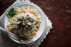 Beef Stroganoff. Top shot of beef stroganoff over egg noodles Stock Photography