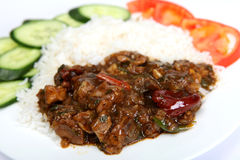Beef szechuan meal Royalty Free Stock Photo