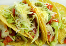 Beef Tacos. Delicious beef tacos with beef, lettuce, tomato salsa, avocado, grated cheese and sour cream royalty free stock photography