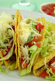 Beef Tacos. Delicious beef tacos with beef, lettuce, tomato salsa, avocado, grated cheese and sour cream royalty free stock image