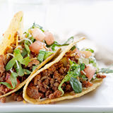 Beef tacos with lettuce cheese and tomato Royalty Free Stock Images