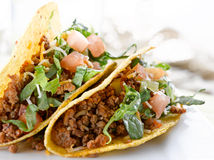 Beef tacos with lettuce cheese and tomato Royalty Free Stock Image