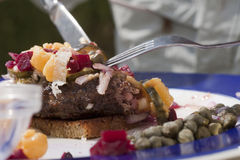 Beef Tartar royalty free stock photo
