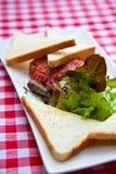Beef Tartar Royalty Free Stock Image