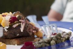 Beef Tartar Done stock photos