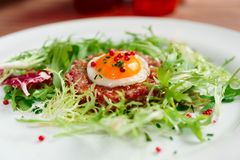 Beef tartare in plate Royalty Free Stock Photos