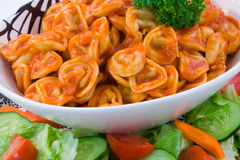 Beef Tortellini and Salad. On white background Stock Image