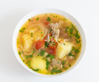 Beef and vegetable soup Royalty Free Stock Photos