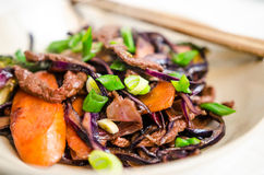 Beef and vegetables Royalty Free Stock Photos