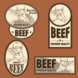 Beef vintage labels Stock Image