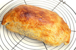 Beef wellington from the oven Stock Photography
