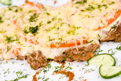 Beefsteak with cheese, macro Royalty Free Stock Photos