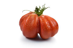 Beefsteak Tomato with Drops 2. One Big Beefsteak Tomato with Drops on white board Royalty Free Stock Photo