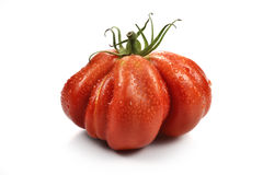 Beefsteak Tomatoes with Drops 1. One Big Beefsteak Tomato with Drops on white board Stock Photography
