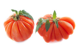 Beefsteak tomatoes Royalty Free Stock Image
