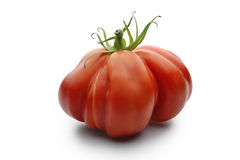 Beefsteak Tomatoes 1. One Big Beefsteak Tomato on white board Stock Photography