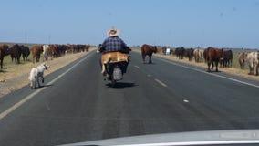 Beefy road Stock Photo