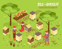 Free Beegarden Bee Yard Isometric Illustration Stock Photography - 99531612