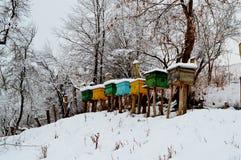 beehive fotografia de stock