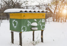 Beehive in apiary covered with snow in wintertime Stock Images