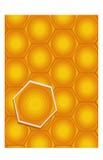 Beehive Background Stock Photos