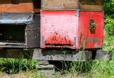 Beehive boxes Stock Photo