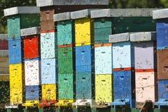 Beehive boxses Royalty Free Stock Image