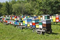 Beehive boxses Royalty Free Stock Photos