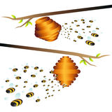 Beehive Branch. An image of bees and beehive royalty free illustration