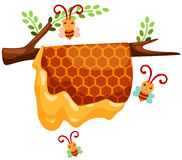 Beehive branch. Illustration of isolated beehive branch on white background Royalty Free Stock Photo