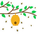 Beehive on a branch with bees Royalty Free Stock Image