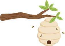 Beehive on Branch Stock Photo