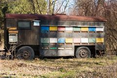 Beehive car. Colorful old car as beehive in the forest Stock Photography