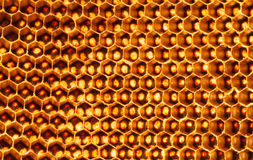 Beehive deserted background Stock Photo