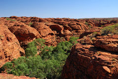 The beehive domes above Kings Canyon. Result from joints or cracks being eroded out over millions of years. Watarrka National Park, Northern Territories Royalty Free Stock Photos