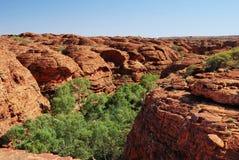 The beehive domes above Kings Canyon. Photo of beehive domes above Australian Kings Canyon with green vegetation at canyon's base Royalty Free Stock Image